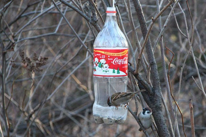 Как сделать кормушку из бутылки